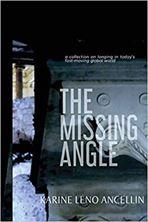 Εικόνα της The Missing Angle