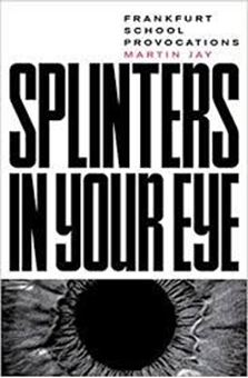 Splinters in Your Eye : Frankfurt School Provocations